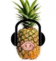 PineappleSnout